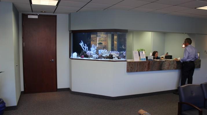 Aquarium Design and Installation